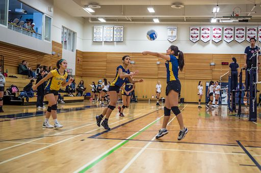 Senior Volleyball Earns Tier 1 Status At ISA's